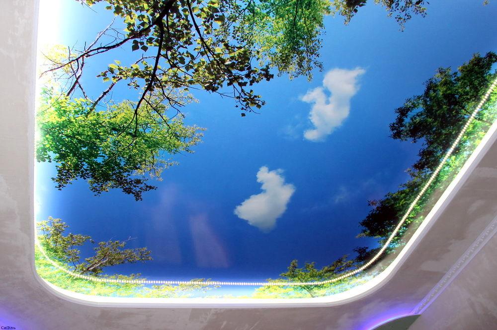 натяжные потолки с рисунком фото для зала 3д